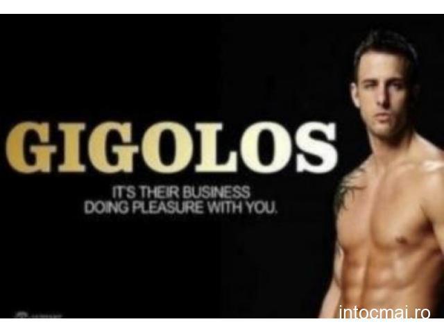 GIGOLO TOP CLASS EXCLUSIVE